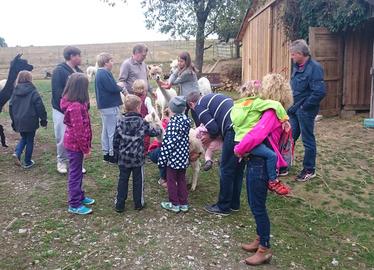 -Die Teilnehmer bei den Alpakas. Foto: Bredl/Landkreis Regen