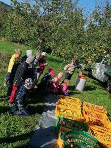 Die staunenden Kinder vor den Obstkisten. Fotos: Maria Ottl/Kindergarten Patersdorf