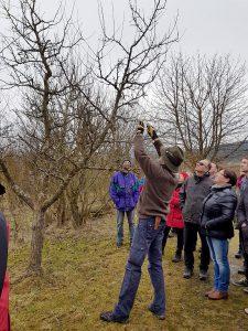Kreisfachberater Klaus Eder beim Winterschnittkurs im Kreislehrgarten. Foto: Gartenbau Kreisverband Regen, Fischer.