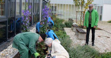 Auch Landrätin Rita Röhrl packte mit an. Unterstützt von Gärtner Lothar Denk setzte sie mehrere Tulpen- und Narzissenzwiebeln in die Erde. Foto: Heiko Langer/Landkreis Regen