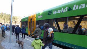 Waldbahn, Foto: Wibmer Christina