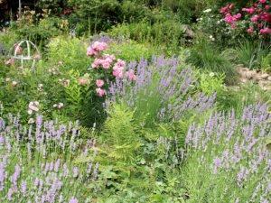 Ein Garten ist nicht automatisch schön, damit er so prächtig wird, muss man viel tun. Was getan werden muss, das zeigen die Gartenbauvereine in Seminaren. Foto: Archiv Langer/Landkreis Regen