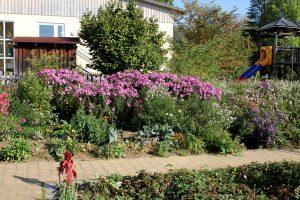 Naturnah und dennoch voller Blütenpracht. So zeigte sich der Bürger- und Schulgarten bei der Zertifizierung zum naturnahen Garten im Jahr 2018. Foto: Langer/Landkreis Regen