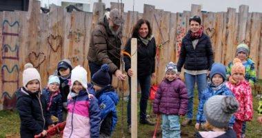 In Patersdorf halfen die Kindergartenkinder kräftig mit, während Klaus Eder den Baum und Brigitte Blaim (Landwirtschaftsamt Regen) den Pflanzpfahl hielten, achtete Kindergartenleiterin Cornelia Brem darauf, dass jedes Kind mithelfen konnte. Foto: Langer/Landkreis Regen