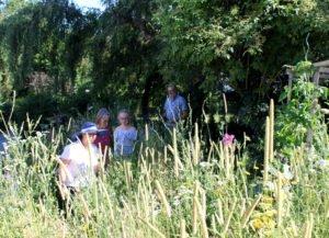 Ein Stück wilde Blumenwiese präsentierte Linda Langer beim Rundgang mit ihrer Tochter Mathilda den Prüfern. Foto: Langer/Landkreis Regen